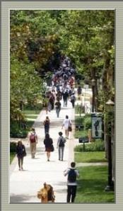 UCLA w:frame
